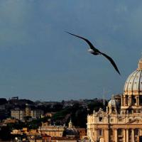 Elezioni di papa Francesco
