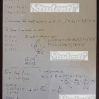 Svolgimento del problema 2-2 traccia matematica seconda prova maturità 2013
