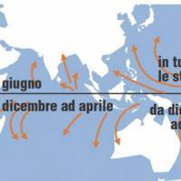 Come nascono tifoni e uragani