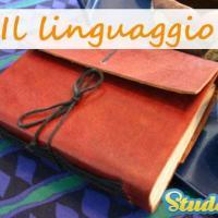 Che linguaggio puoi usare