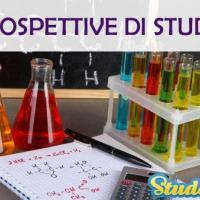 Prospettive di studio