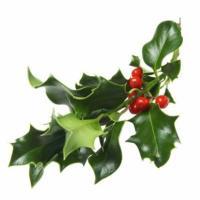Racconto di Natale - Dino Buzzati