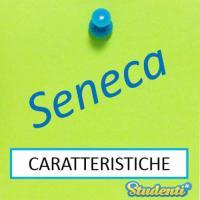 Versione di latino, le caratteristiche di Seneca