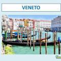Università del Veneto