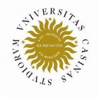 Università di Cassino (867 euro l'anno in media)