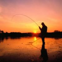 Laurea in scienze della pesca