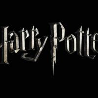 Scienza di Harry Potter (Frostburg State University)