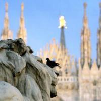 Cattolica (Milano)