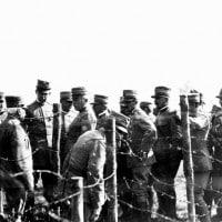 Prima Guerra Mondiale: cronologia, battaglie, protagonisti