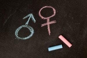 Gli studi di genere
