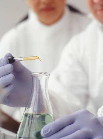 Ricercatori settore biocarburanti