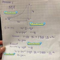 Simulazione fisica: soluzione problema 1 (parte 1)