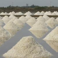 Ristorazione: la conservazione degli alimenti