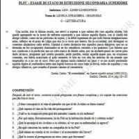 Spagnolo pagina 8