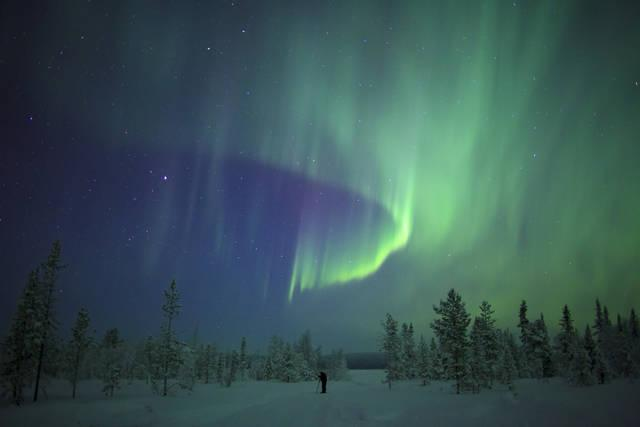 Aurora boreale sulla foresta in Svezia