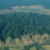 La Foresta Amazzonica