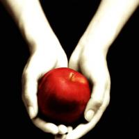 Twilight (43 milioni di copie)