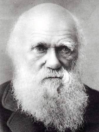 Darwin e l'origine della specie