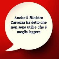 Maria Chiara Carrozza sarebbe d'accordo con me