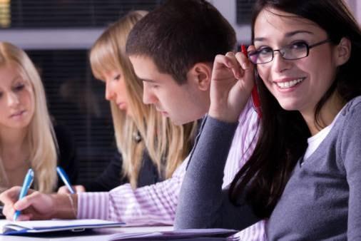 La consulta provinciale studentesca