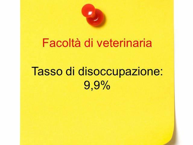 Dodicesimo posto: veterinaria