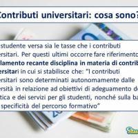 I contributi universitari