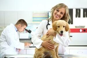 Domande test veterinaria 2017