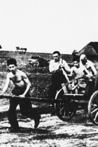 Uomini ebrei costretti a lavorare come braccianti agricoli sotto il regime nazista, nel 1938
