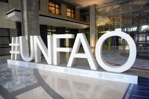 La FAO, Organizzazione delle Nazioni Unite per l'alimentazione e l'agricoltura
