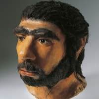 Homo Sapiens: storia e caratteristiche
