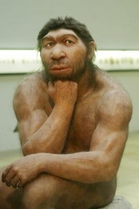 Ricostruzione di Homo di Neanderthal del Prehistoric Museum di Halle, in Germania