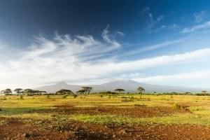 Il cuore dell'Africa