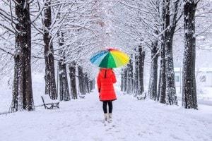 Scuole chiuse per neve 23 gennaio 2019