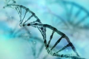 Cos'è e come funziona il DNA?