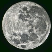 Luna: fasi lunari, struttura e movimenti