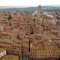 Cecco Angiolieri: biografia, opere e stile