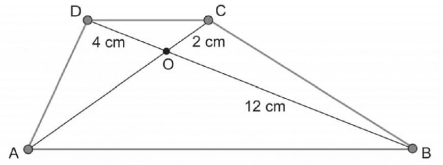 Sapendo che le diagonali di un trapezio ABCD si intersecano nel punto O formando i segmenti OB = 12 cm, OC = 2 cm e OD = 4 cm, il segmento OA misura:
