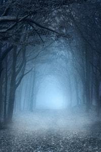 La selva oscura come simbolo di peccato, di retta via smarrita