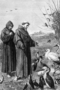 La predicazionedi Francesco agli animali: la figura del santo fu davvero rivoluzionaria per la chiesa dell'epoca