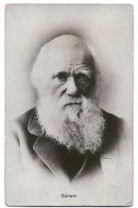 A modo suo, anche quella di Charles darwin fu una rivoluzione: per questo Darwin è spesso associato a Copernico