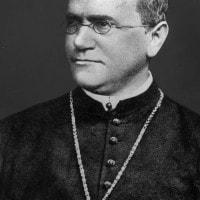 Gregor Mendel e la genetica: biografia, leggi e scoperte
