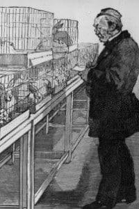 Pasteur lavora, nel suo laboratorio, agli esperimenti sui conigli