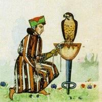 Federico II di Svevia: biografia, pensiero politico e caratteristiche dello Stupor Mundi