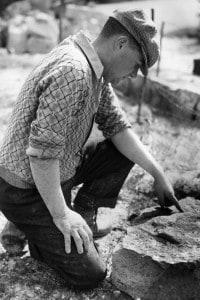 Uno dei metodi più utilizzati nella datazione dei reperti fossili è il C- 14, che utilizza un isotopo del Carbonio
