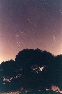 Secondo la Hack le stelle cadenti si vedranno sempre meno