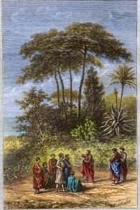 La scuola di Pitagora a Crotone: il filosofo greco con i suoi studenti a Crotona
