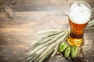 L'uso del luppolo per la birra artigianale