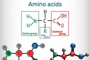Amminoacidi: formula generale