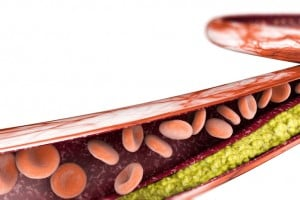 I lipidi: la formazione del colesterolo