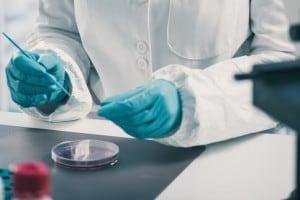 Gelatina in chimica: definizione ed esperimento in laboratorio